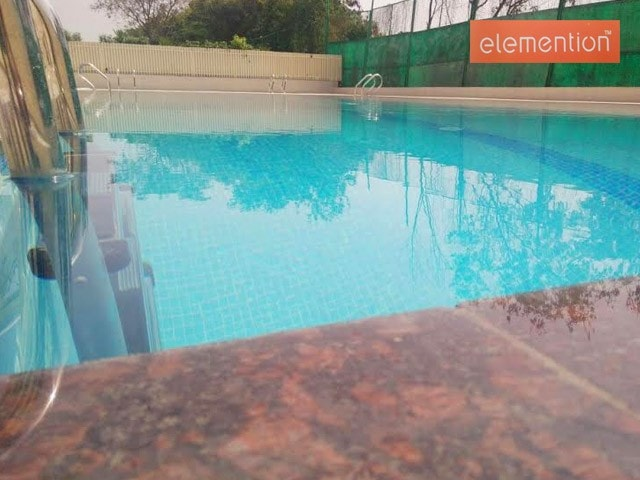 Elemention Gym Chandigarh - Get Ready For Swimming With The Best Pool Packages
