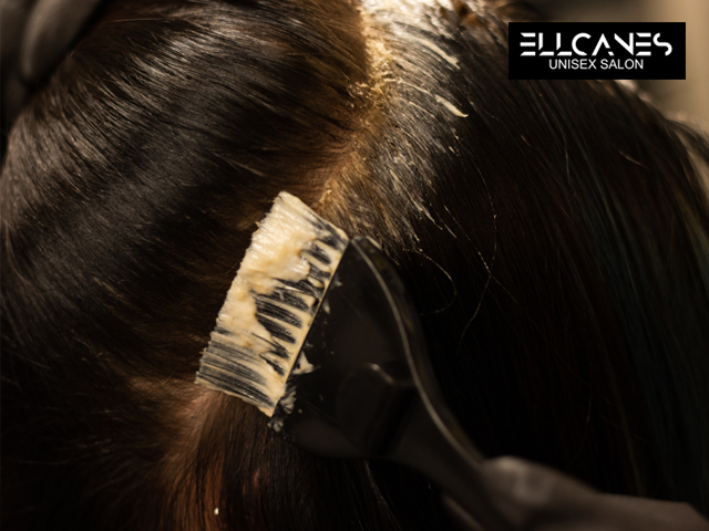 Ellcanes Salon Chandigarh